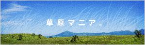 草原マニア